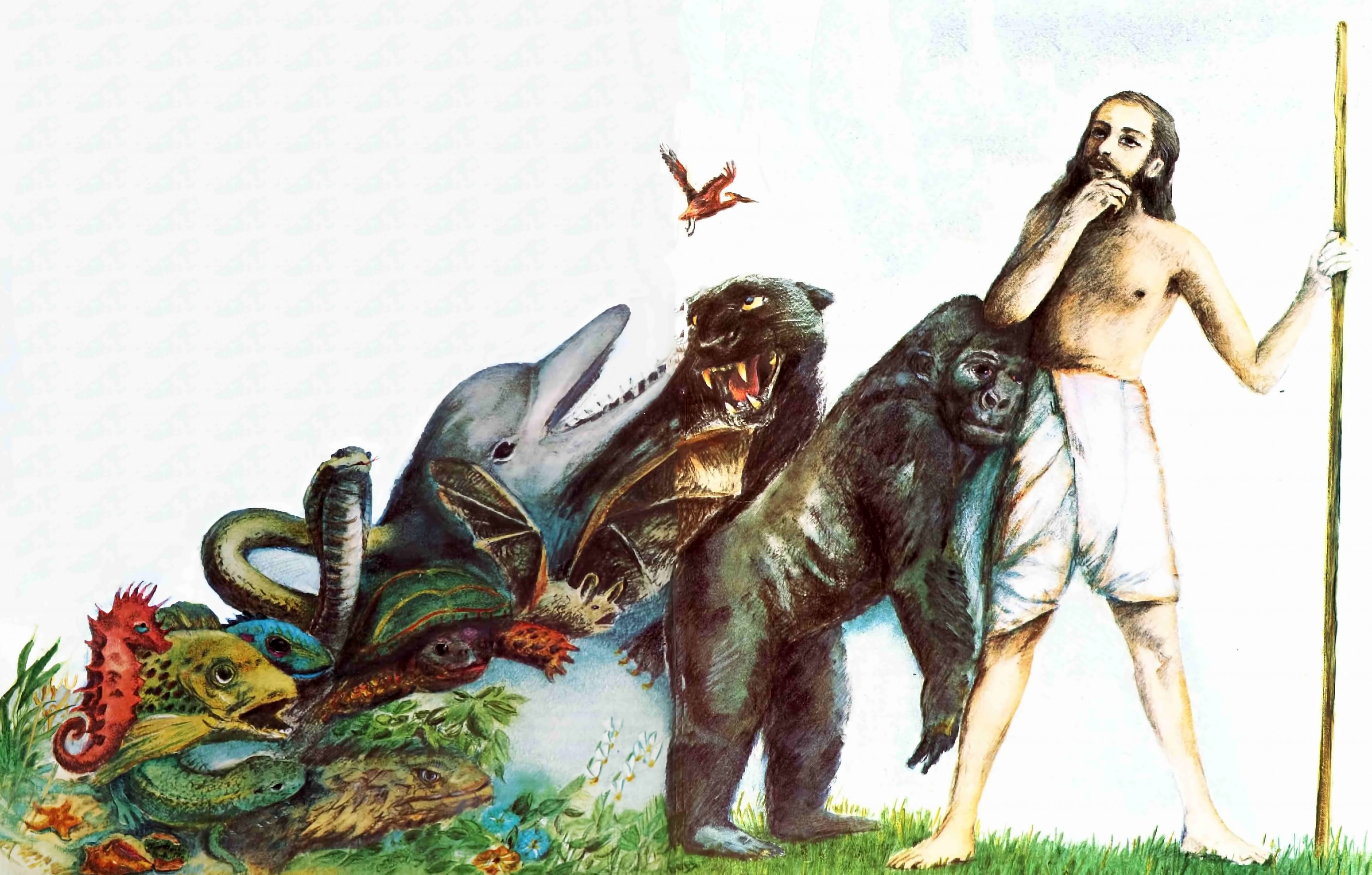 human and monster help people Historically, many people suffering from these mutations were labeled monsters or freaks — but today, we know they are simply part of the broad spectrum of genetic variations in our species.